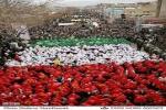 مسیرهای راهپیمایی روز جهانی قدس در شهرهای استان خوزستان