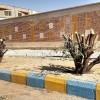 هرس غير اصولي درختان در  مسجدسليمان قابل درك نيست