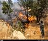 درخواست دوستداران محیط زیست خوزستان از رئیس جمهور جهت اعلام حالت فوقالعاده در زاگرس