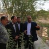 بازدید فرماندار مسجدسلیمان از موزه نفت تمبی