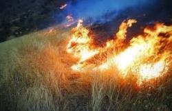 حدود ۷۰ هکتار از زمین های زراعی و مراتع در منطقه جهانگیری روستای آب زالو دچار حریق گردید